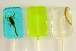 'Three Amigos Lollipop Set'  Scorpion, Margarita and Margarita Worm Lollipops  (one each)