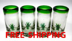 Shot glasses Mexican cactus agave saguaro prickly pear