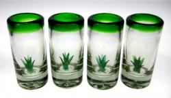 Mexican Shot Glasses Agave Cactus Tequila Green Rim 4